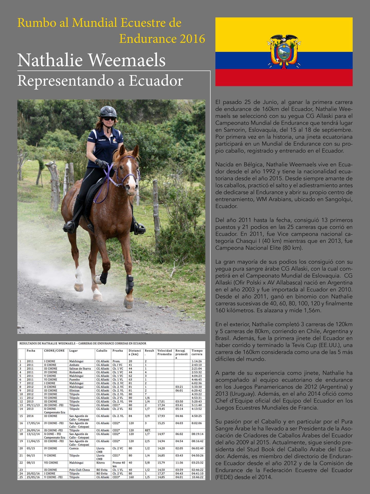 Boletín de Prensa 001
